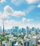 東京の<br>医学部予備校
